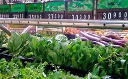 Kiểm tra siêu thị Metro Thăng Long, phát hiện nhiều rau thối