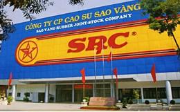 Cao su Quảng Nam tính thoái vốn tại Cao Su Sao Vàng