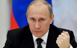 """Ông Putin tuyên bố """"sẽ đối đầu"""" nếu bà Clinton đắc cử"""