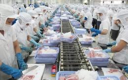 Có 57 cơ sở được xuất khẩu cá da trơn vào Hoa Kỳ
