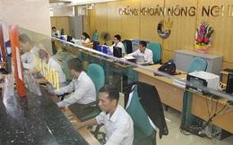 Trích lập dự phòng 155 tỷ đồng cho khoản đầu tư vào HNG, Agriseco báo lỗ 205 tỷ đồng trong 6 tháng đầu năm