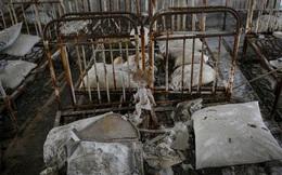 """30 năm """"thành phố ma"""" ở Chernobyl"""