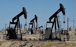 """Giá dầu bị """"cầm chân"""" trong phiên sáng đầu tuần tại châu Á"""