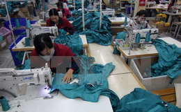 WB: TPP sẽ giúp kim ngạch xuất khẩu của Việt Nam tăng hơn 30%