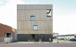 Kiến trúc liền mạch trong ngôi nhà gỗ xinh đẹp