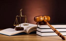 Công bố thông tin không chính xác, Quốc tế Sơn Hà (SHI) bị phạt 85 triệu đồng