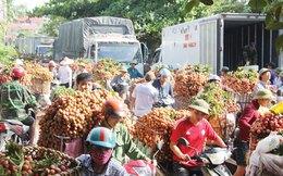 Thúc đẩy xuất ngoại, trái cây cần vượt rào cản