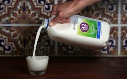 """Sáng kiến này đã giúp một công ty sữa vô danh tạo nên """"cơn địa chấn"""" trên thị trường bơ sữa thế giới"""