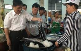 Đà Nẵng triển khai ngày đầu tiên bán cá sạch