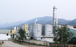 Dân chưa tin vào nhà máy xăng sinh học