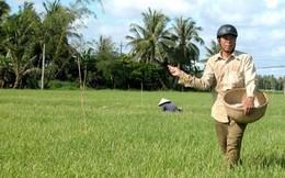 Vì sao cách một con sông mà gạo Việt không bằng Campuchia?