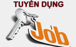 Công ty chứng khoán Đông Nam Á thông báo tuyển dụng