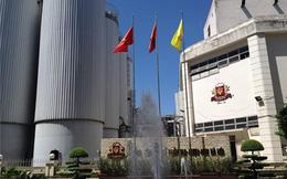 Tổng Giám đốc Carlsberg Vietnam: Giá cổ phiếu Habeco 48.000 là hợp lý