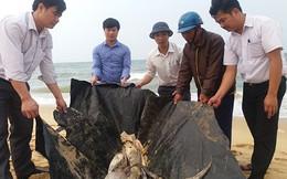 100% mẫu hải sản đánh bắt gần bờ phải lấy mẫu kiểm tra hàng ngày