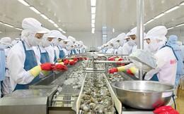 Giá vốn tăng vọt, Thủy sản Minh Phú lỗ hợp nhất gần 7 tỷ trong năm 2015