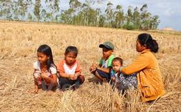 Việt Nam kêu gọi quốc tế hỗ trợ khẩn 48,5 triệu USD ứng phó thiên tai