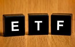 Review V.N.M ETF: Thêm SBT, loại PPC, cổ phiếu Việt Nam chiếm gần 85% danh mục