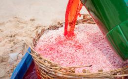 Kinh hoàng nhuộm đỏ ruốc bằng hóa chất