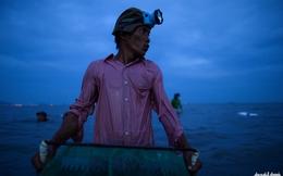 Phóng sự ảnh: Nông dân Cần Giờ lao đao khi nghêu chết