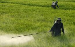 Hóa chất Lâm Thao (LAS): Chi phí tăng mạnh, quý 2 lãi hơn 30 tỷ đồng