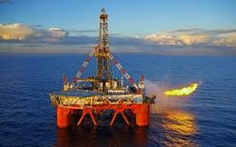 Giá dầu hồi phục, hàng loạt cổ phiếu dầu khí tăng trên 5%