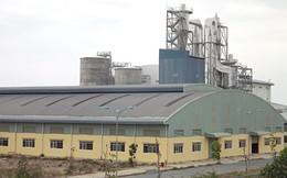 Nhà máy giấy 2.000 tỉ 'trùm mền', người dân ôm nợ