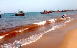Nước biển đỏ ở Quảng Bình có thể do đất đỏ