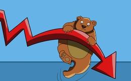 Gần 1/2 giá trị mua ròng của khối ngoại trong hai năm qua thuộc về 1 tổ chức duy nhất