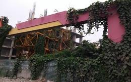 """Sông Đà Thăng Long đã tìm được """"đũa thần"""" trục vớt Usilk City"""