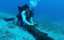 Bắt đầu sửa chữa đứt tuyến cáp quang biển đi quốc tế