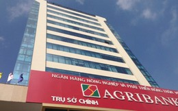 Đề xuất cổ phần hóa Agribank trong vòng 5 năm tới