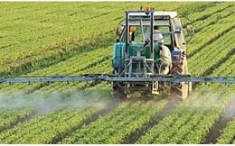 Kể cả có VinGroup hay Hòa Phát, đầu tư vào nông nghiệp vẫn chưa là làn sóng