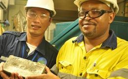 Ngân hàng hứa bảo lãnh cho đại gia vàng nợ thuế ở Quảng Nam