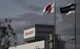 Foxconn ra giá 5,2 tỷ USD thâu tóm Sharp