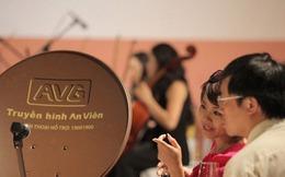 Về MobiFone, AVG đổi tên thành Mobi TV và thuê bao bất ngờ tăng 226%