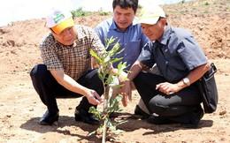 Dự án 37 triệu USD vào nông nghiệp ở Quảng Trị: Không được gia hạn giải quyết vướng mắc thêm một lần nào nữa