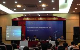 ĐHCĐ chứng khoán Bảo Việt: Vì sao không chia cổ tức năm 2015?