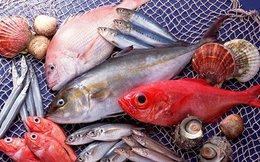 Tăng thời gian hỗ trợ ngư dân vùng cá chết