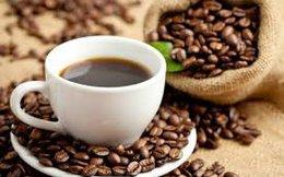Sẽ kiểm tra độc tố trong sản phẩm cà phê