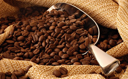 Cà phê găm hàng chờ bùng nổ giá