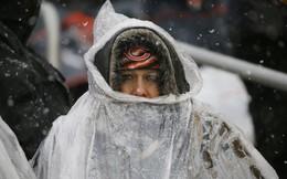 Giá rét kỷ lục, Chicago lạnh hơn sao Hỏa