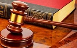 Giao dịch cổ phiếu BHS người có liên quan CĐNB bị phạt 42,5 triệu đồng
