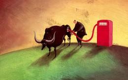 """Nhu cầu chốt lãi gia tăng, nhà đầu tư tìm penny """"trú bão"""""""