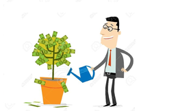 [Chọn cổ phiếu] Những cổ phiếu có cổ tức tiền mặt/thị giá hấp dẫn
