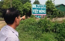 Hà Nội xác định trường hợp lấn chiếm, sử dụng đất trái phép tại dự án Làng sinh thái chè Việt Mông