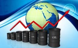 PVGas North điều chỉnh giảm 32% chỉ tiêu doanh thu năm 2015 do giá dầu giảm mạnh