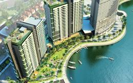 Thanh tra dự án giao, cho thuê đất khu vực biển Bà Rịa - Vũng Tàu