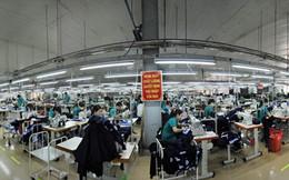 Doanh nghiệp nhỏ và vừa tận dụng cơ hội từ các hiệp định thương mại