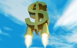 Chứng khoán Phú Hưng: Vay hàng nghìn tỷ của 13 ngân hàng, 5 doanh nghiệp để cấp vốn margin cho nhà đầu tư