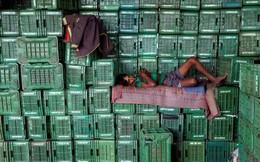 Bỏ tiền to chống tham nhũng, Ấn Độ gặp khủng hoảng lớn